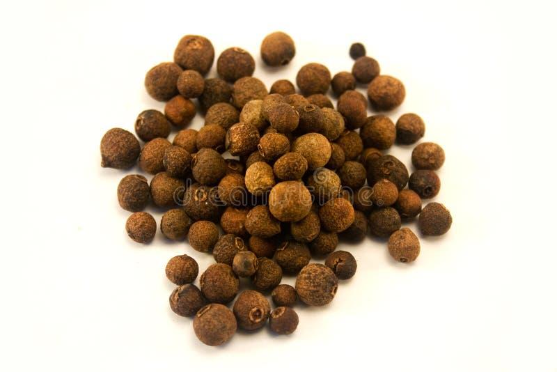 Pimenta da Jamaica foto de stock