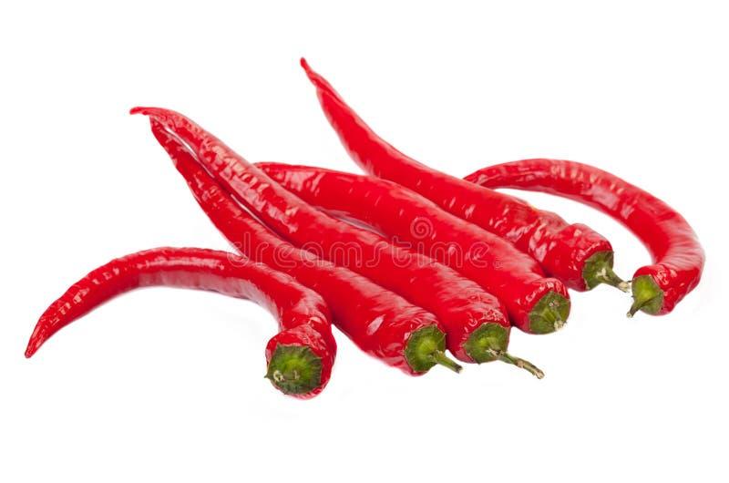 Pimenta de pimentão fotografia de stock royalty free