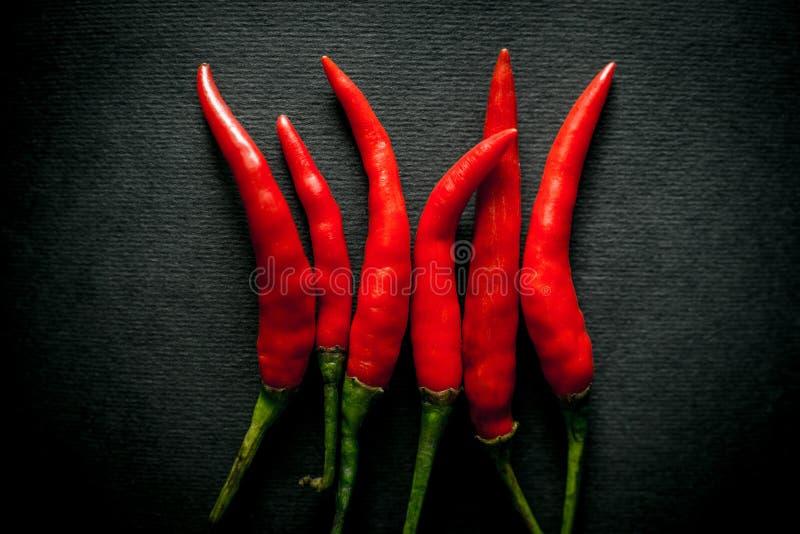 Pimenta de pimentão vermelho quente tailandesa imagem de stock
