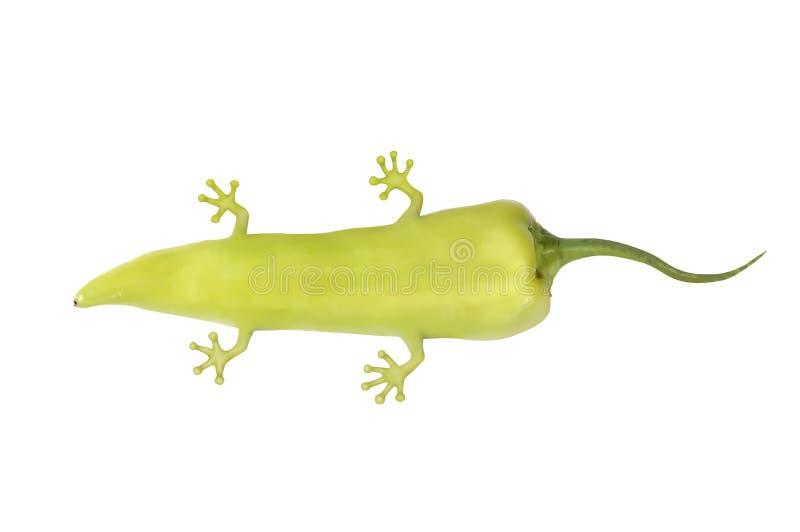 Pimenta Genetically alterada com pés e cauda fotos de stock