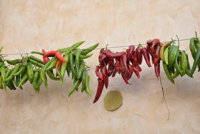 Pimenta verde e vermelha foto de stock