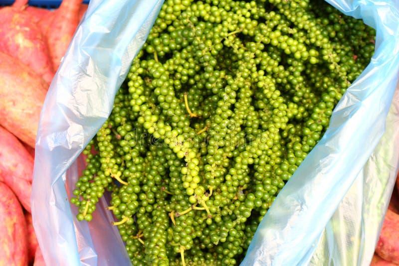 Pimenta verde tailandesa fotografia de stock