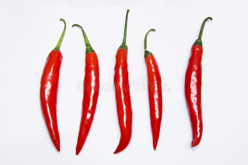 Pimenta vermelha imagem de stock