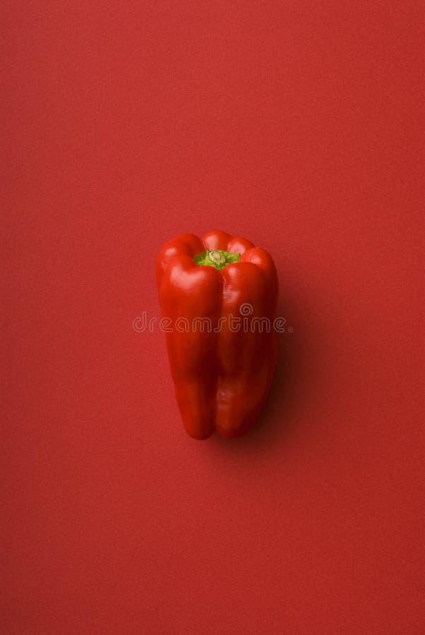 Pimenta vermelha foto de stock royalty free
