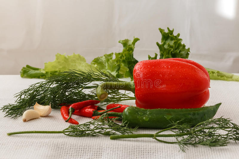 Pimenta vermelha e verde imagens de stock