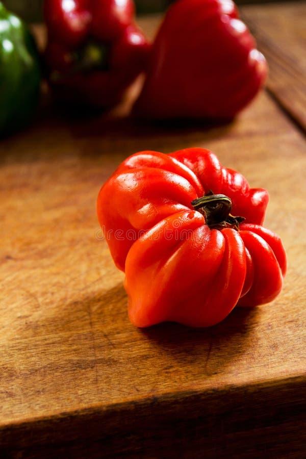 Pimenta vermelha madura fotografia de stock