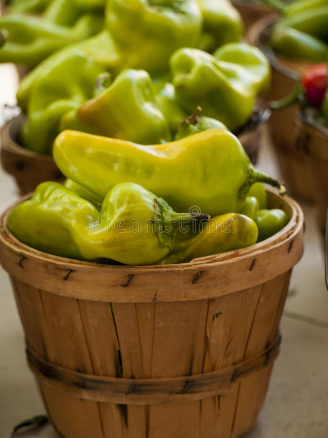 Download Pimentas foto de stock. Imagem de cores, edible, planta - 26504104