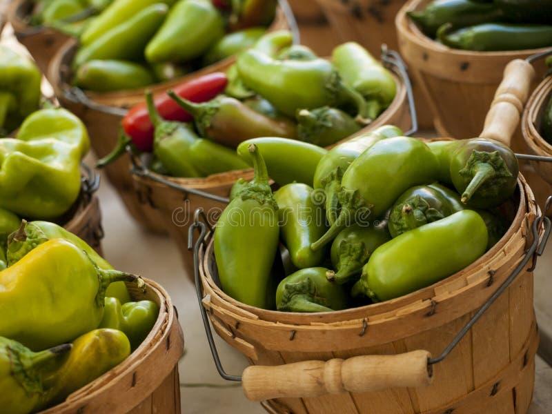 Download Pimentas foto de stock. Imagem de comer, fazendeiros - 26504110