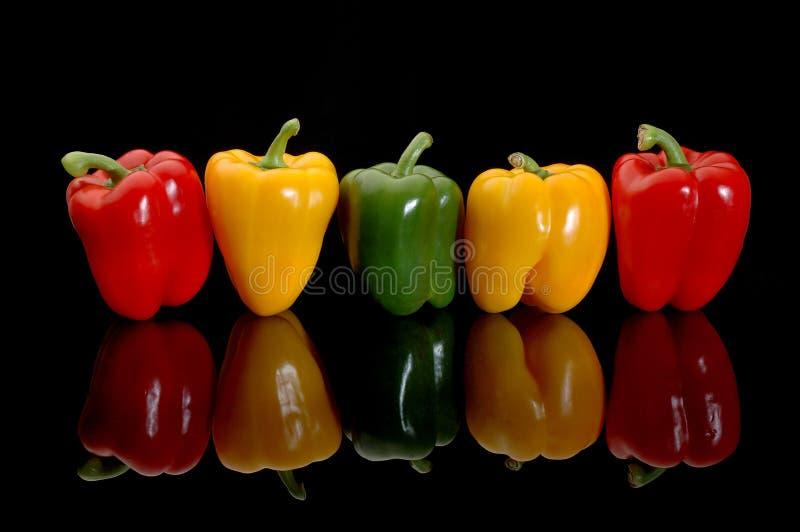 Pimentas coloridas foto de stock