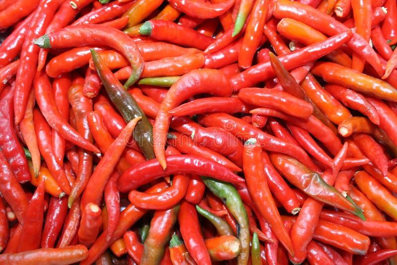 Pimentas de pimentão encarnados imagem de stock royalty free