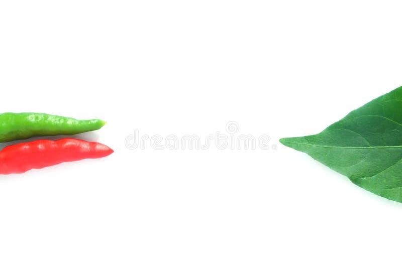 Pimentas de pimentão vermelhas e verdes com folha imagens de stock royalty free