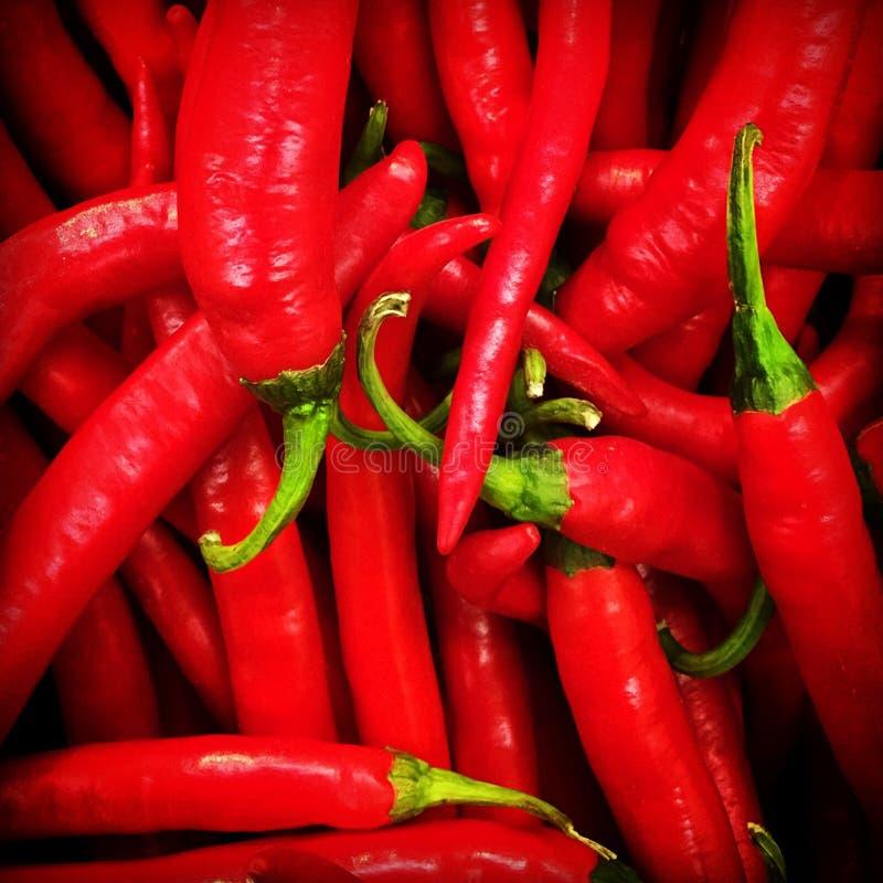 Pimentas de pimentões vermelhos imagem de stock