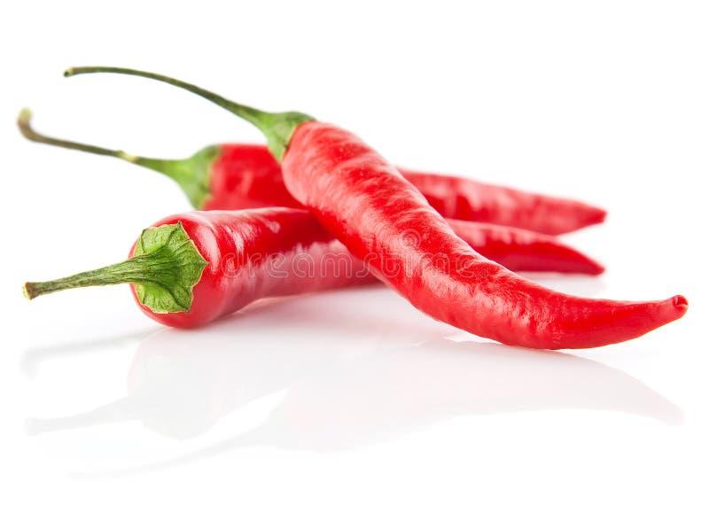 Pimentas de pimentões vermelhos isoladas no branco fotografia de stock royalty free