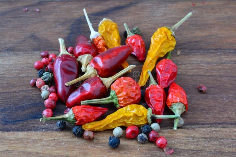 Pimentas e grãos de pimenta imagem de stock