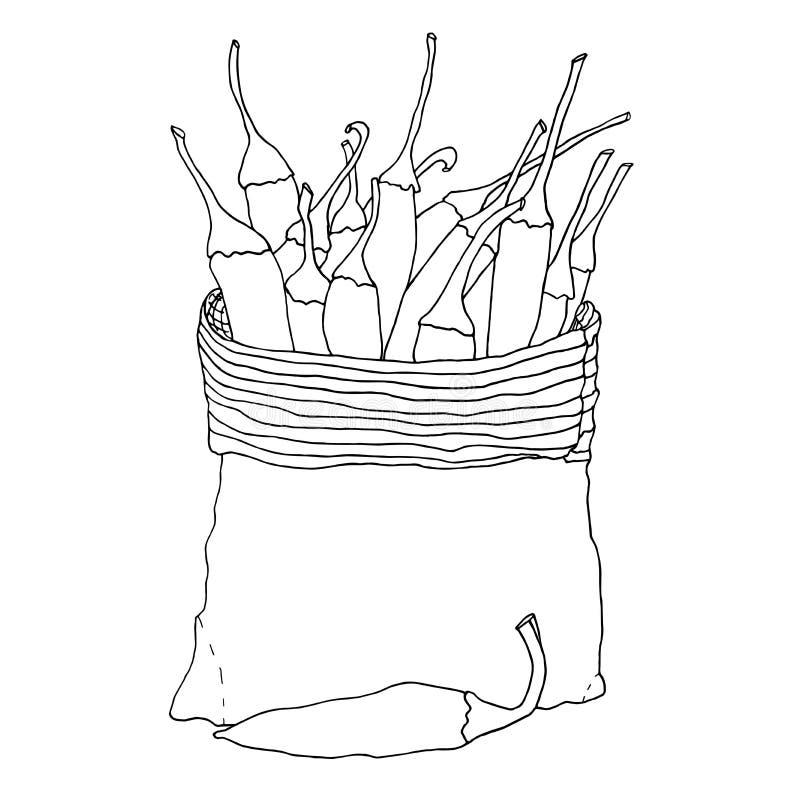 Pimentas em um saco da lona Esboço tirado mão do vetor ilustração stock