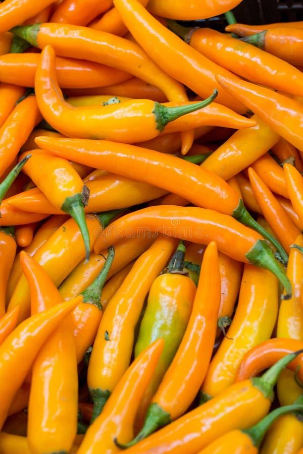 Pimentas frias amarelas picantes para a venda fotografia de stock royalty free