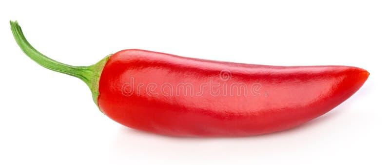 Pimentas isoladas no branco imagens de stock