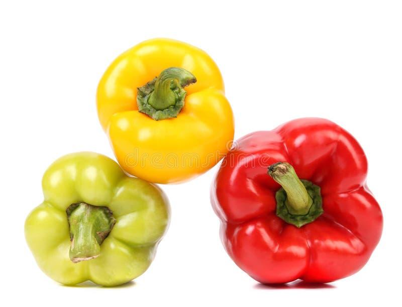 Pimentas maduras coloridas. foto de stock royalty free