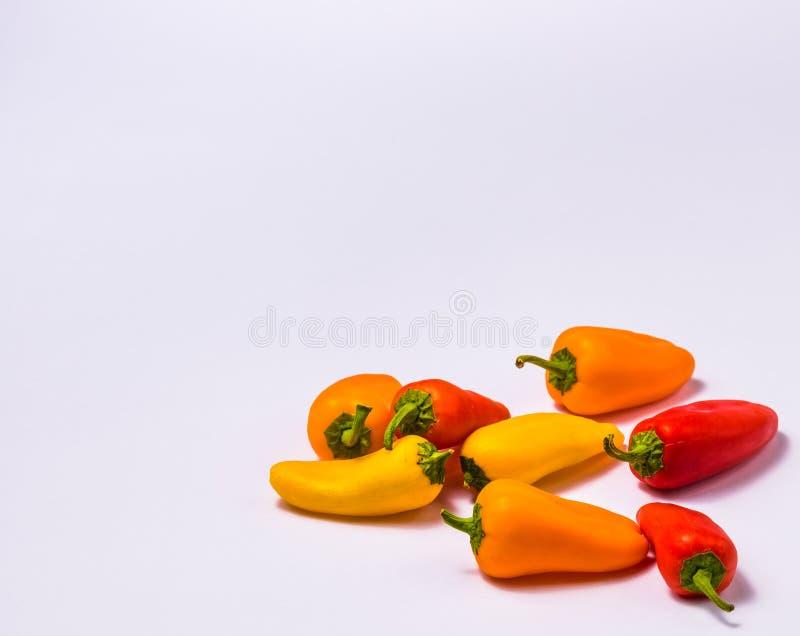 Pimentas pequenas no fundo branco imagem de stock