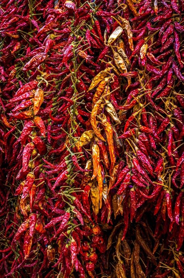 Pimentas secadas coloridas no bazar italiano imagens de stock