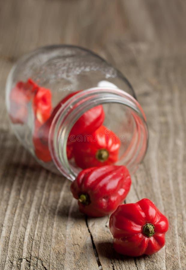 Pimentas vermelhas do habanero do pimentão do frasco imagem de stock royalty free