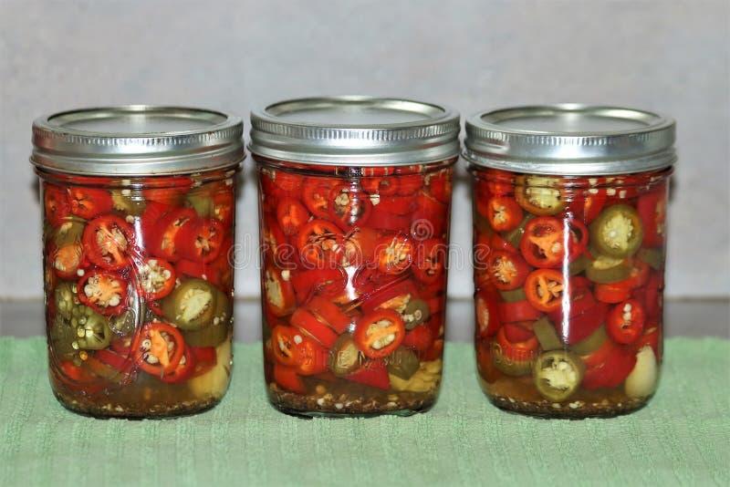 Pimentas vermelhas e verdes enlatadas do Jalapeno fotografia de stock