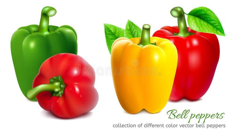 Pimentas, vermelho, amarelo, laranja, verde ilustração stock