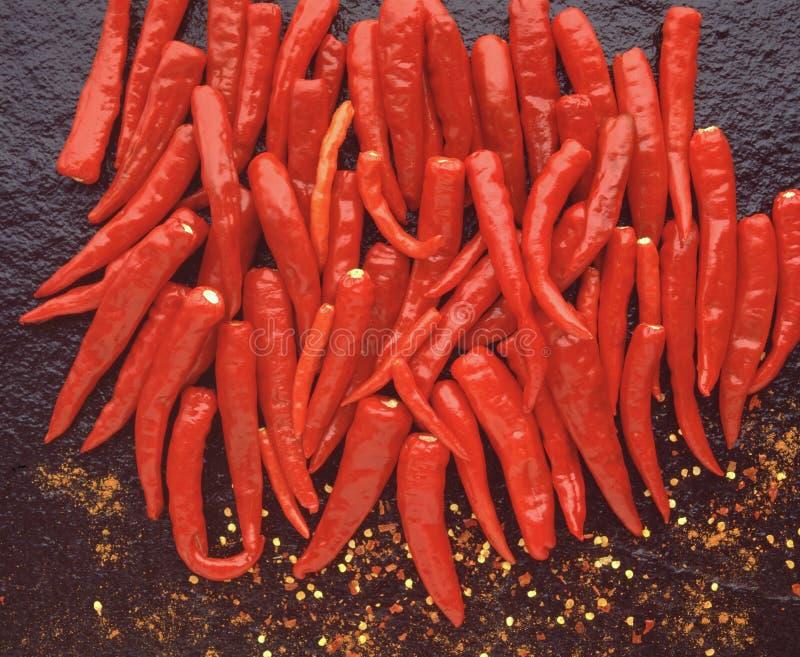 Piments crus flamboyants épicés chauds indiens de poivron rouge photos stock