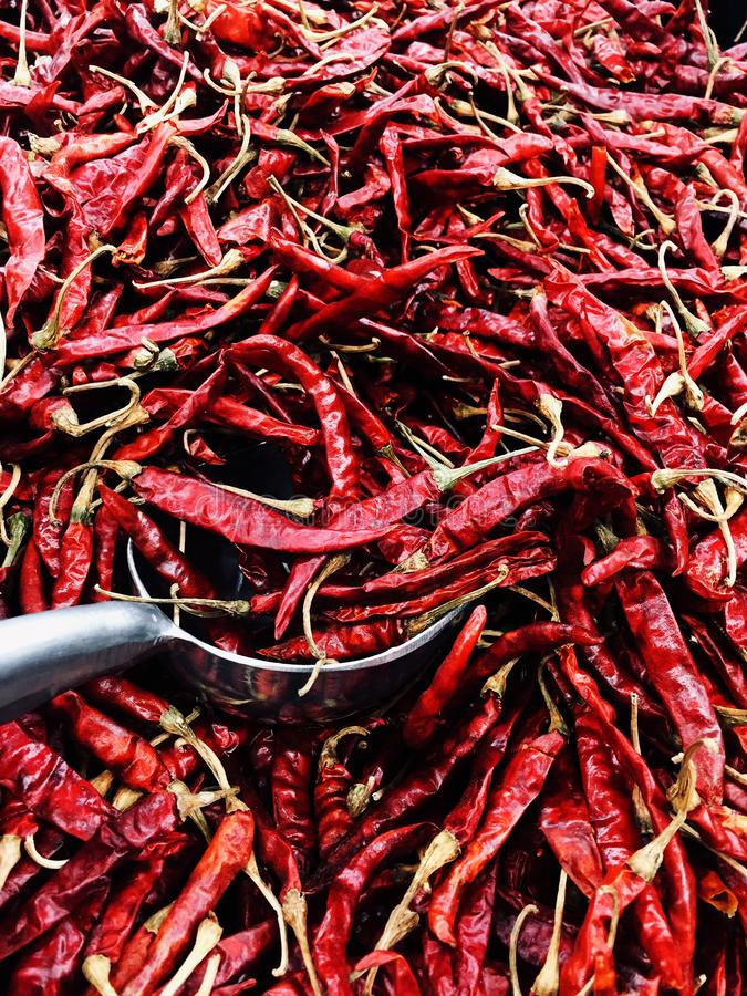 Piments de piment rouge séché pour la cuisson ou la garniture photo stock