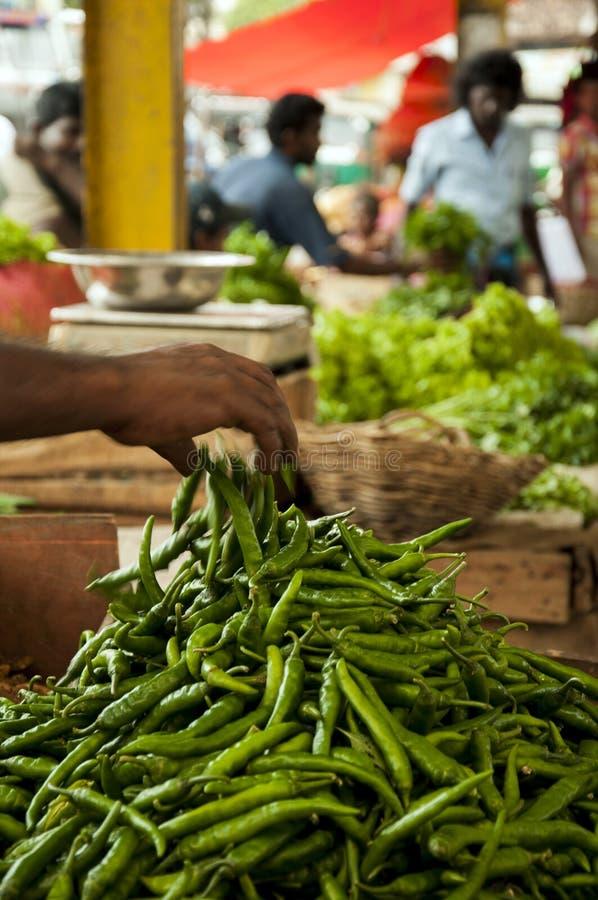Piments verts au marché à Colombo, Sri Lanka image libre de droits