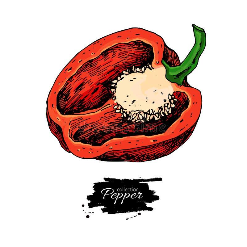 Pimienta stock de ilustración