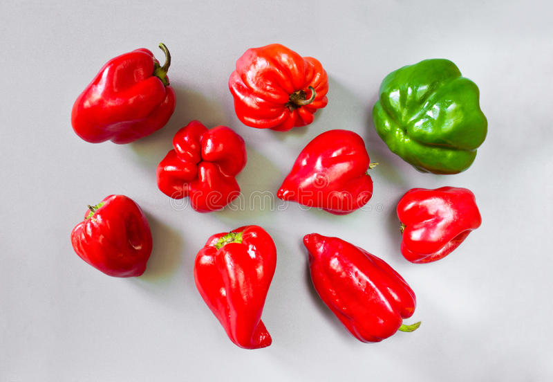 Pimienta colorida de la paprika imagen de archivo