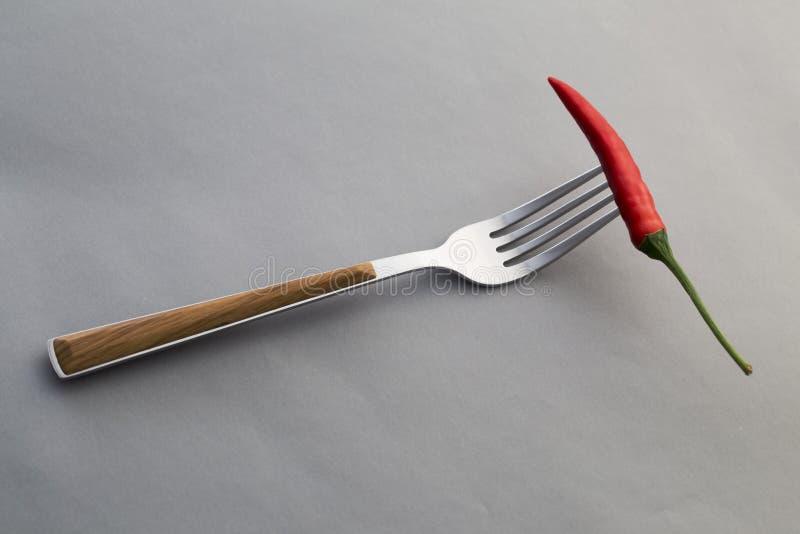 Pimienta de chile en una bifurcación imagen de archivo