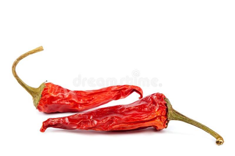 Pimienta de chile rojo seca en el fondo blanco imágenes de archivo libres de regalías