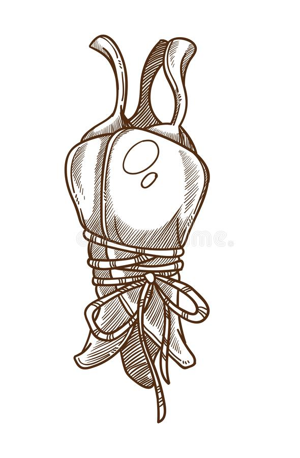 Pimienta de Pimienta o de chile atada con la verdura aislada cuerda del bosquejo stock de ilustración