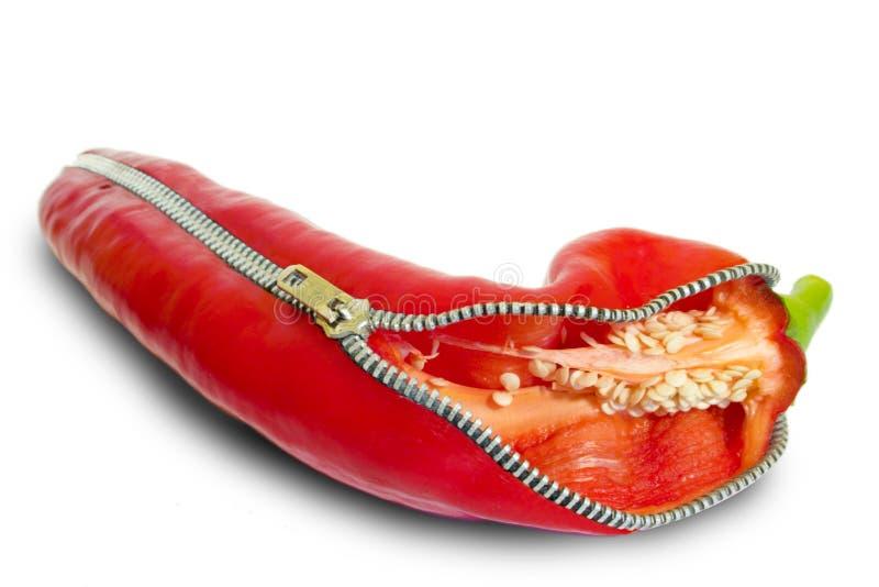 Pimienta roja - pimienta del Jalapeno con un cierre relámpago foto de archivo