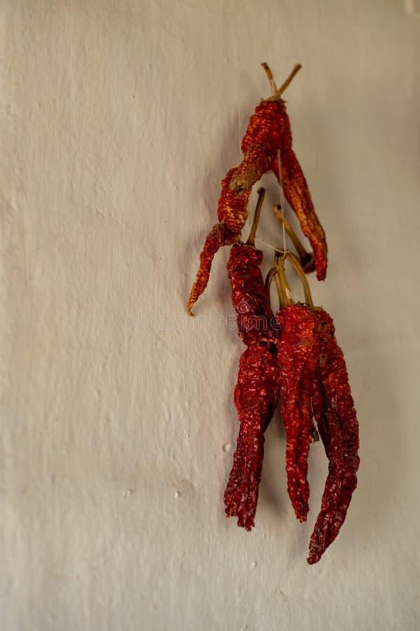 Pimienta roja secada en un paquete en la pared imagen de archivo libre de regalías