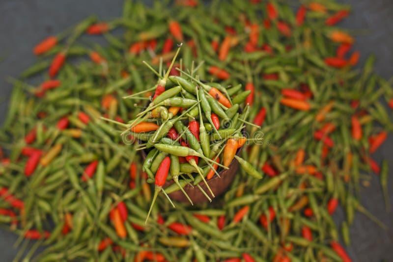 Pimienta roja y verde/chile imagen de archivo libre de regalías