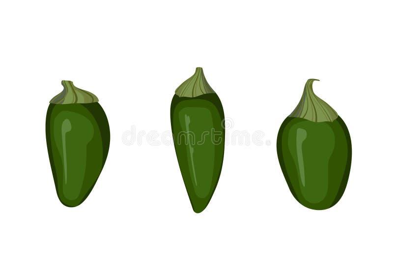Pimienta verde del Jalapeno ilustración del vector