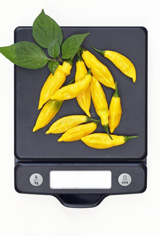 Pimientas calientes del limón en escala imagenes de archivo