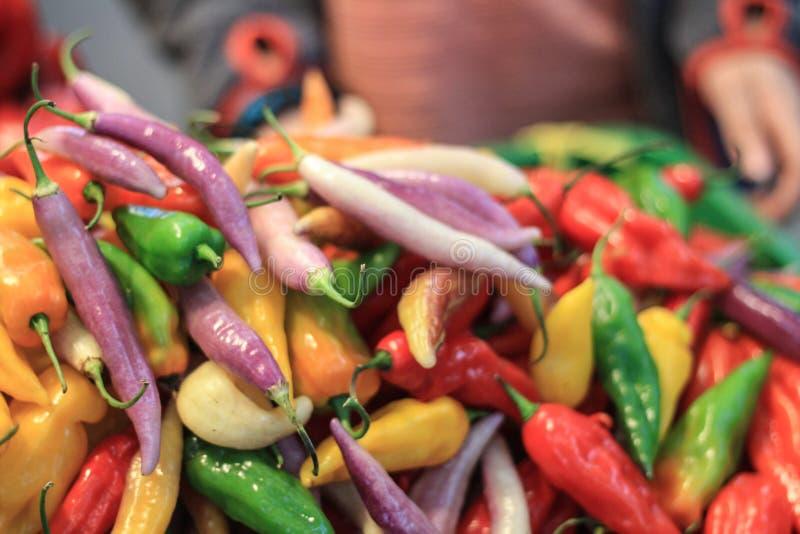 Pimientas coloridas foto de archivo