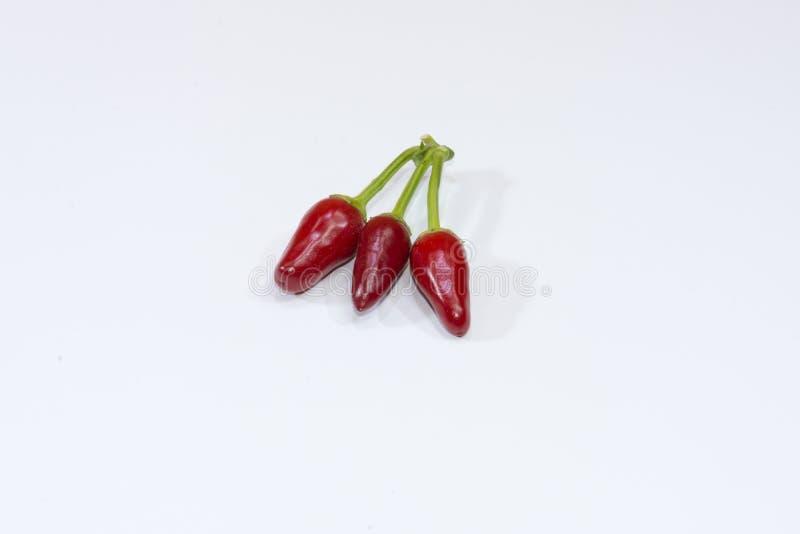 Pimientas de cayena foto de archivo libre de regalías