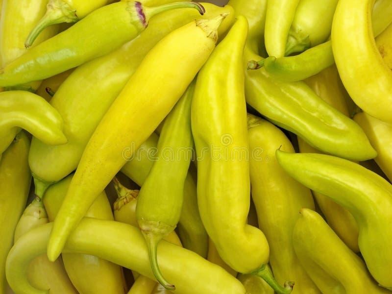 Pimientas de chile amarillas imagen de archivo libre de regalías