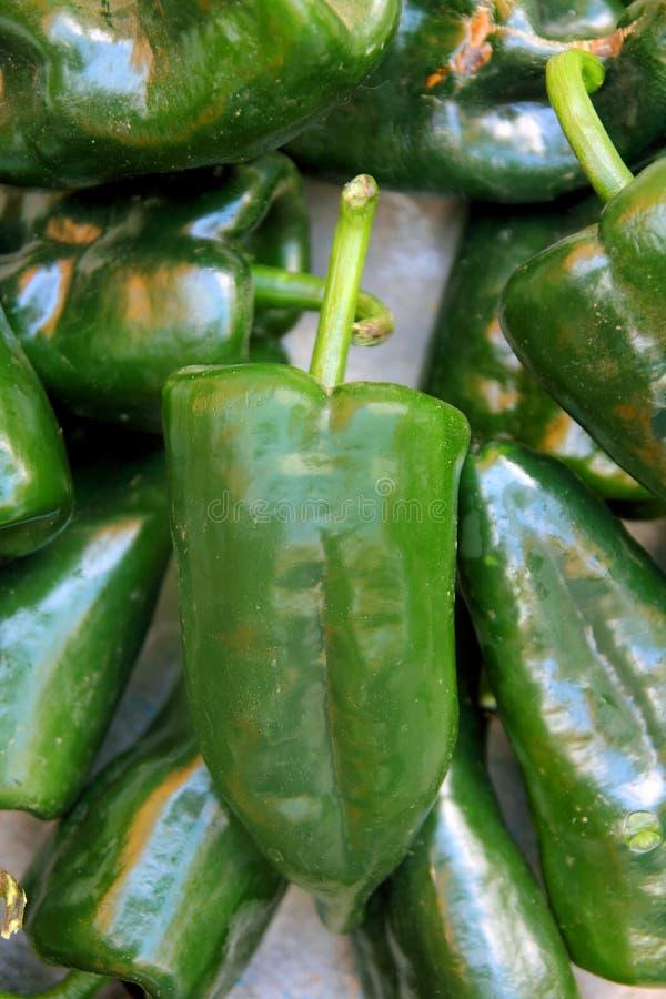 Pimientas de chile de Poblano Chile fotos de archivo libres de regalías