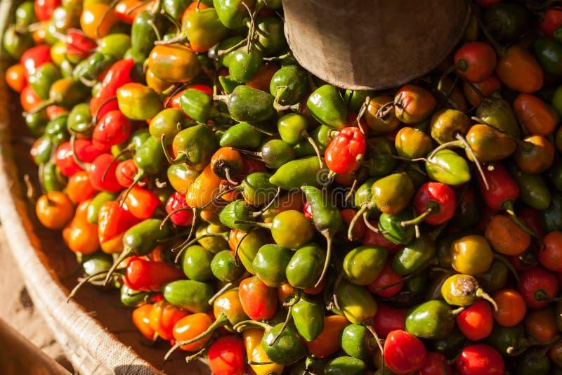 Pimientas de chile rojas, amarillas, y verdes imagenes de archivo