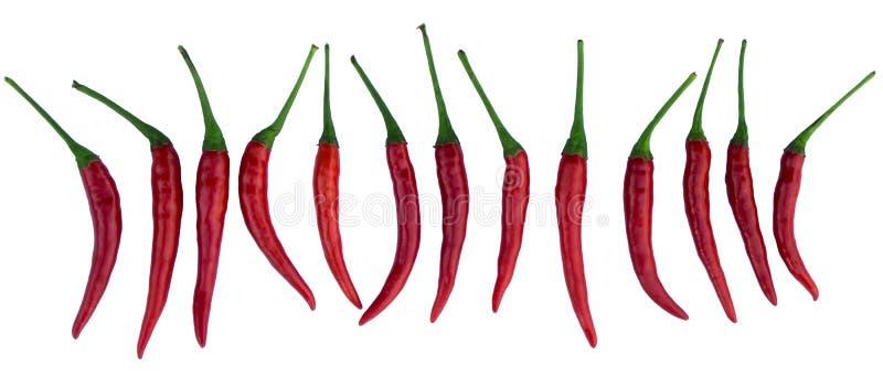 Pimientas de chile rojo imagenes de archivo