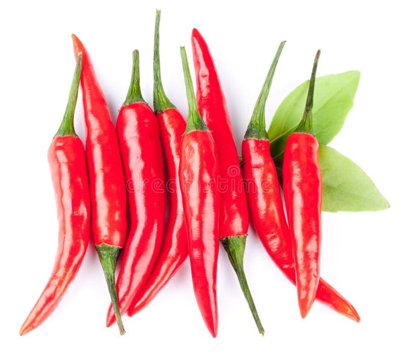 Pimientas de chile rojo calientes imagen de archivo libre de regalías