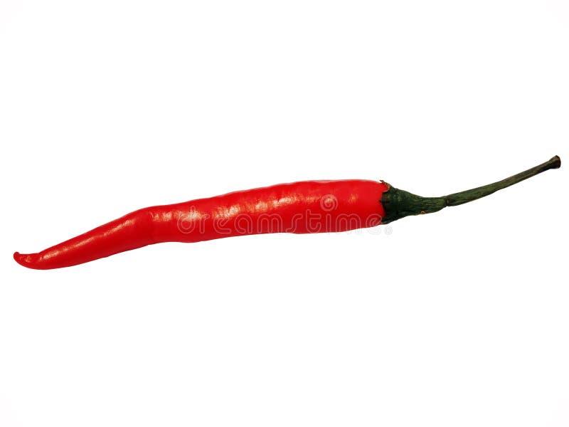 Pimientas de chile rojo calientes aisladas en el fondo blanco imágenes de archivo libres de regalías