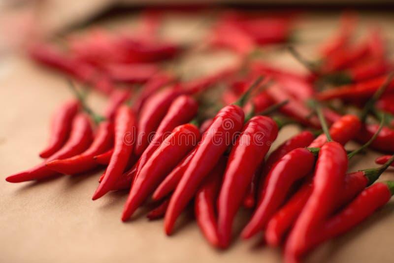 Pimientas de chile rojo, opinión del primer fotografía de archivo libre de regalías