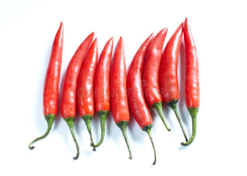 Pimientas del chile picante en blanco imagen de archivo